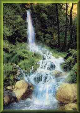 Wasserfall Allergien